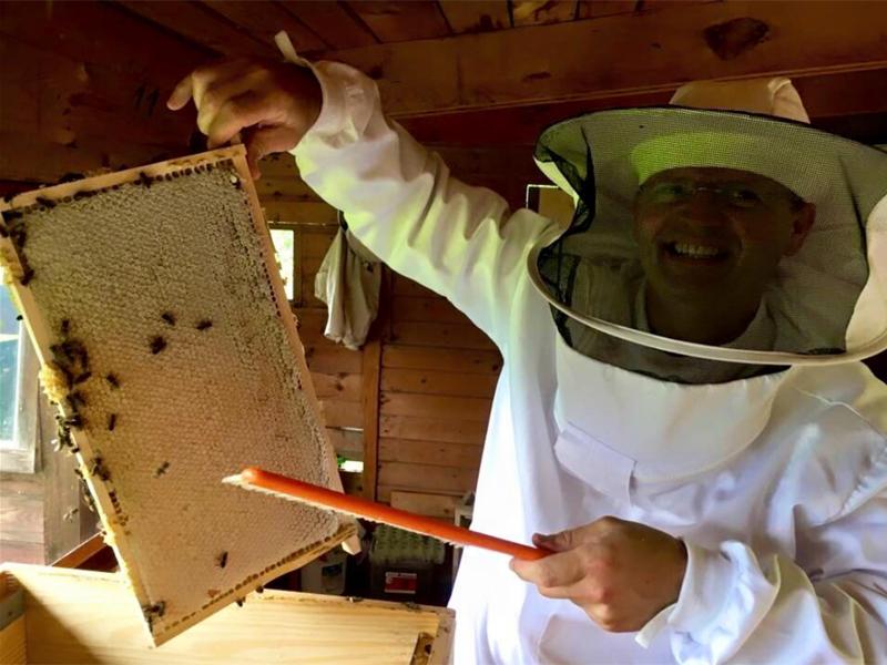 Stefans Bienen produzieren den THERESA Honig